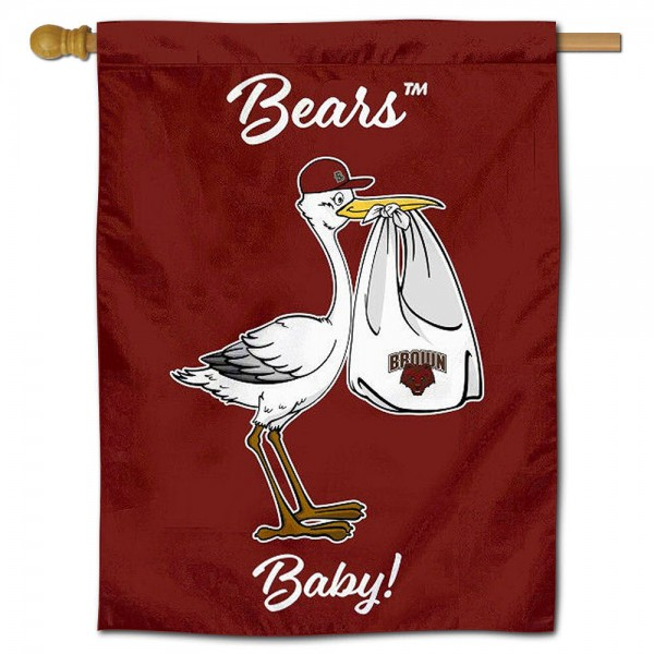 Brown University New Baby Banner