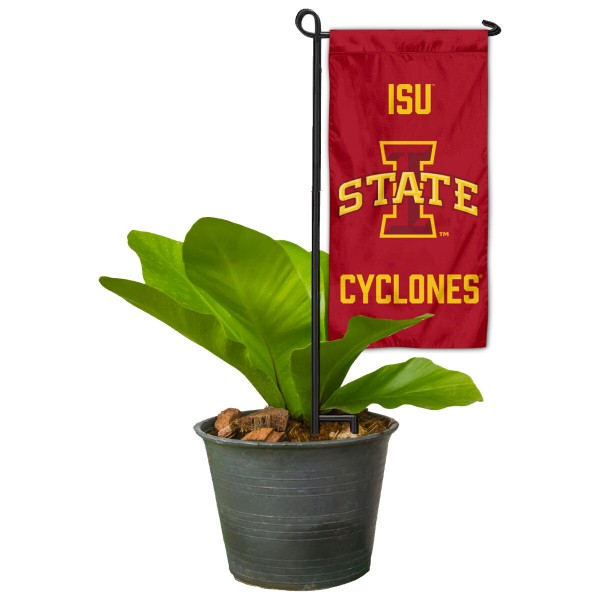 Iowa State Mini Garden Flag and Table Topper