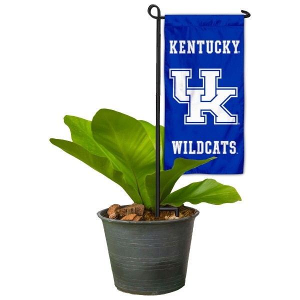 Kentucky UK Wildcats Mini Garden Flag and Table Topper