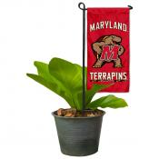 Maryland Terps Mini Garden Flag and Table Topper