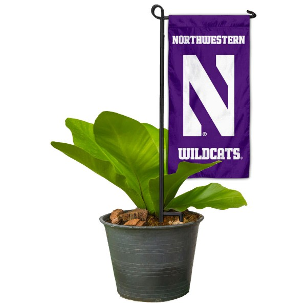 Northwestern Wildcats Mini Garden Flag and Table Topper