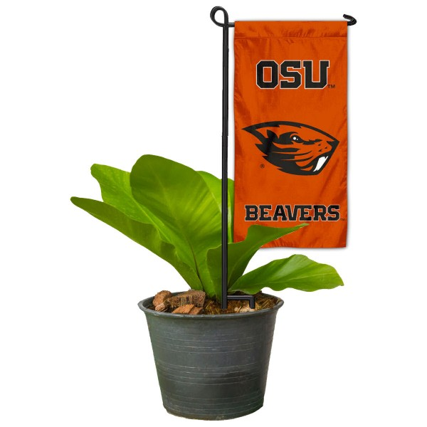 OSU Beavers Mini Garden Flag and Table Topper