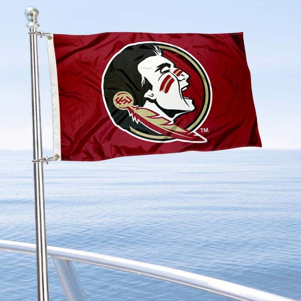 Seminoles Mini Flag