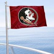 Seminoles Mini Flag
