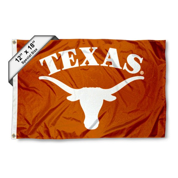 Texas Longhorns Mini Flag