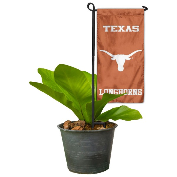 Texas UT Longhorns Mini Garden Flag Marker