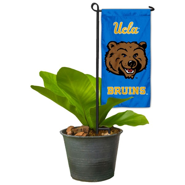 UCLA Mini Garden Flag and Table Topper