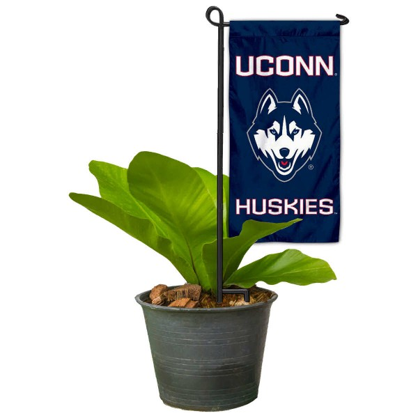UCONN Mini Garden Flag and Table Topper
