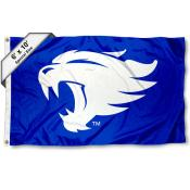University of Kentucky Wildcat Logo 6x10 Large Flag