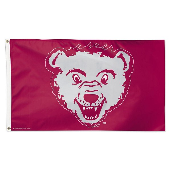 University of Montana College Vault Flag