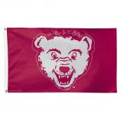 University of Montana College Vault Flag
