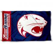 USA Jaguars Flag