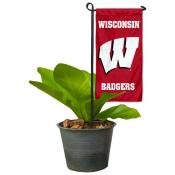 UW Badgers Mini Garden Flag and Table Topper