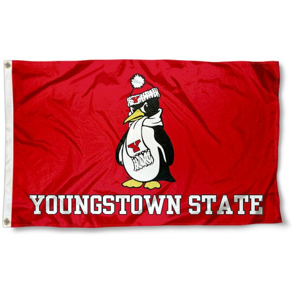 Youngstown State Flag